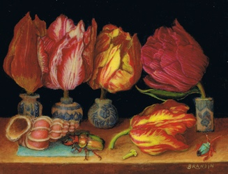 Still life tulips, seashell and beetles