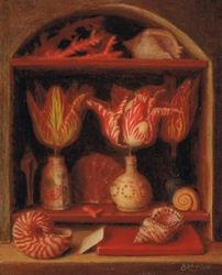 Still life with nautilus shell and tulips
